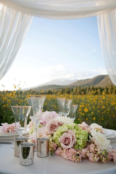 flagstaff forest weddings and venue (10)